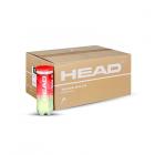 Коробка HEAD CHAMPIOSHIP (72 мяча)